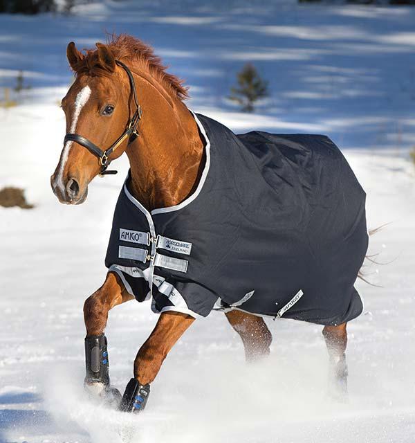 Image of Amigo ponydækken uden hals Navy