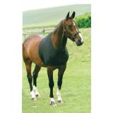 HorseGuard_Undertrøje