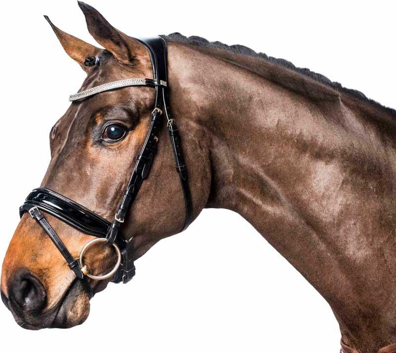 Image of   Horseguard trense sort