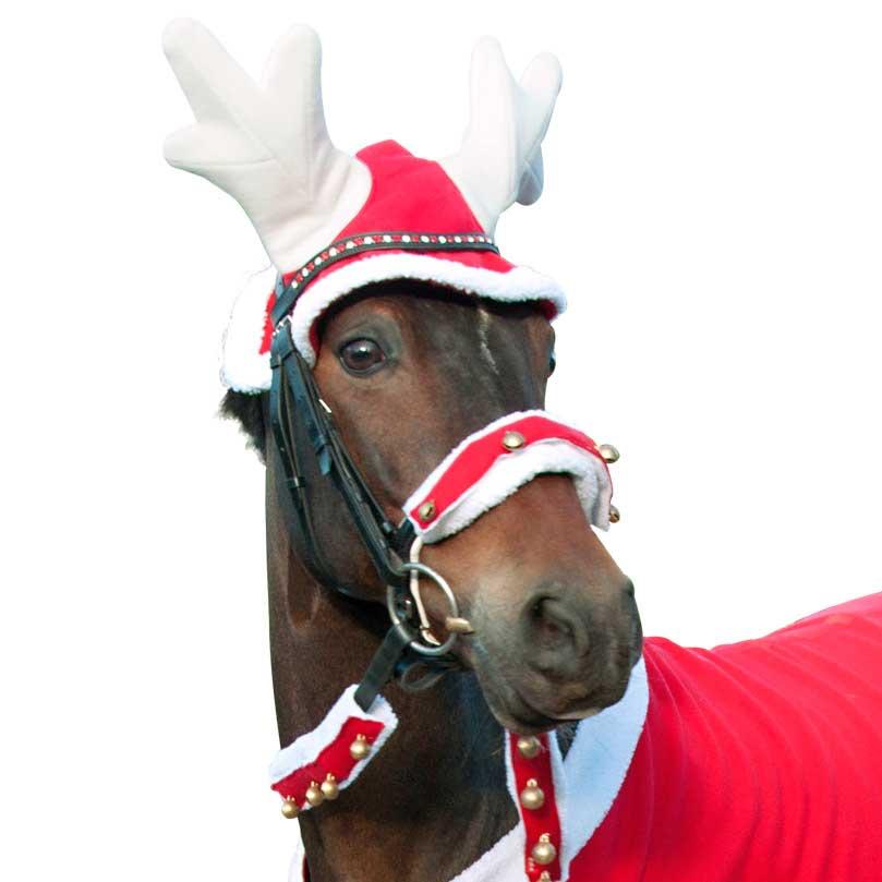 Billede af Julegevir til hesten